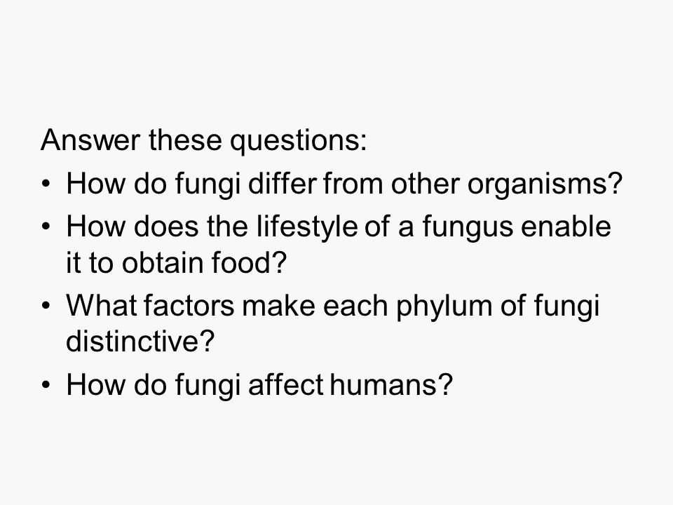 Part 2: Reproduction Fungal Divisions