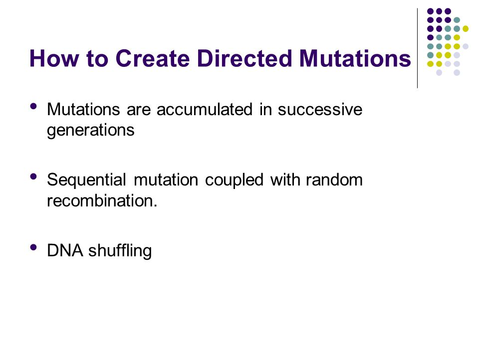 Presentation Outline Introduction Methods and Results Site Directed Mutagenesis Primary Rounds of Random Mutagenesis Site-specific Randomization Secondary Round of Random Mutagenesis Primary Round of In Vivo Shuffling of Mutations Secondary Round of In Vivo Shuffling Discussion Q & A