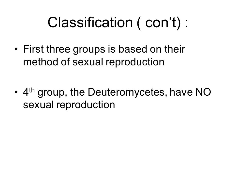 Classification ( con't) : First three groups is based on their method of sexual reproduction 4 th group, the Deuteromycetes, have NO sexual reproducti