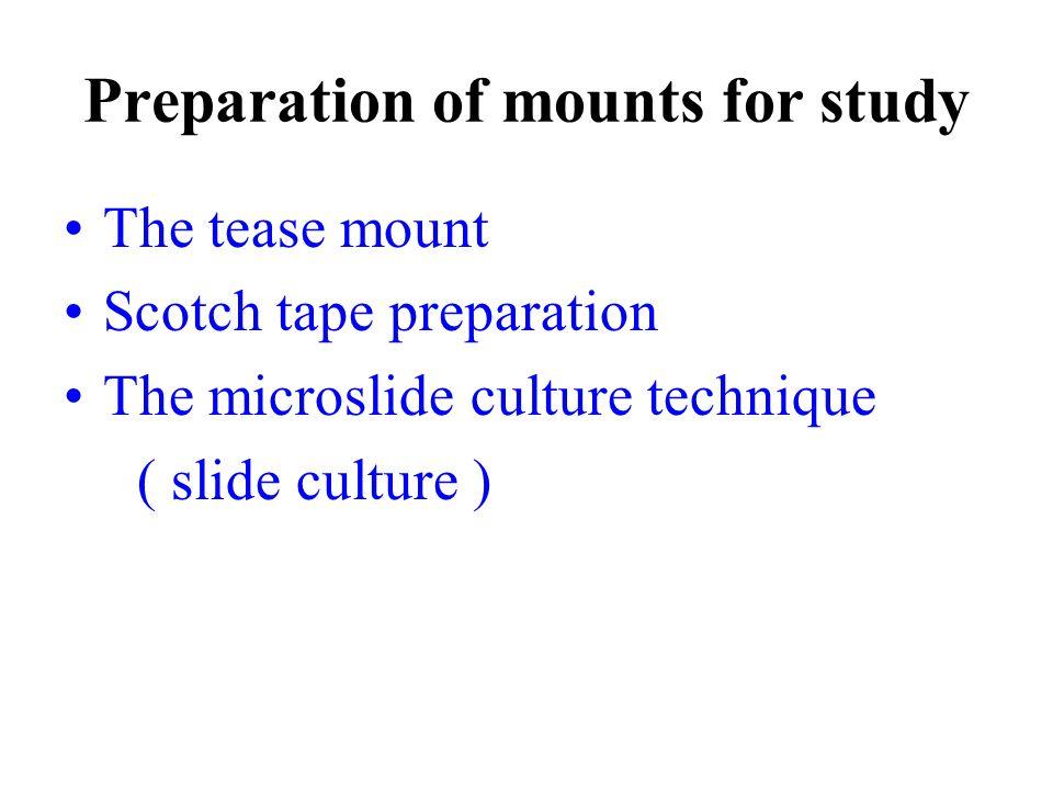 Preparation of mounts for study The tease mount Scotch tape preparation The microslide culture technique ( slide culture )