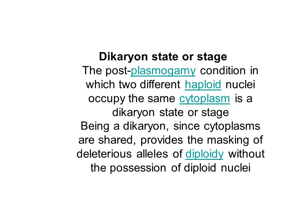 Dikaryon state or stage The post-plasmogamy condition in which two different haploid nuclei occupy the same cytoplasm is a dikaryon state or stageplas