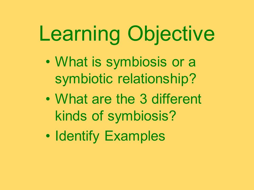Learning Objective What is symbiosis or a symbiotic relationship.