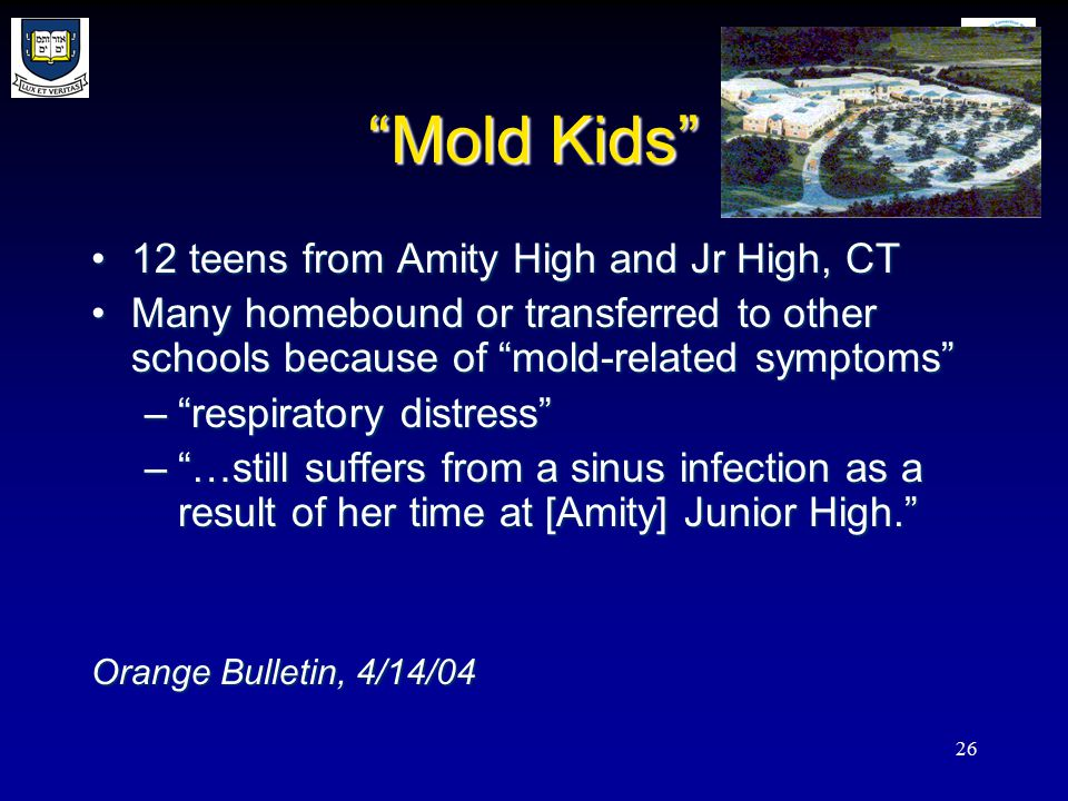 26 Mold Kids 12 teens from Amity High and Jr High, CT12 teens from Amity High and Jr High, CT Many homebound or transferred to other schools because of mold-related symptoms Many homebound or transferred to other schools because of mold-related symptoms – respiratory distress – …still suffers from a sinus infection as a result of her time at [Amity] Junior High. Orange Bulletin, 4/14/04