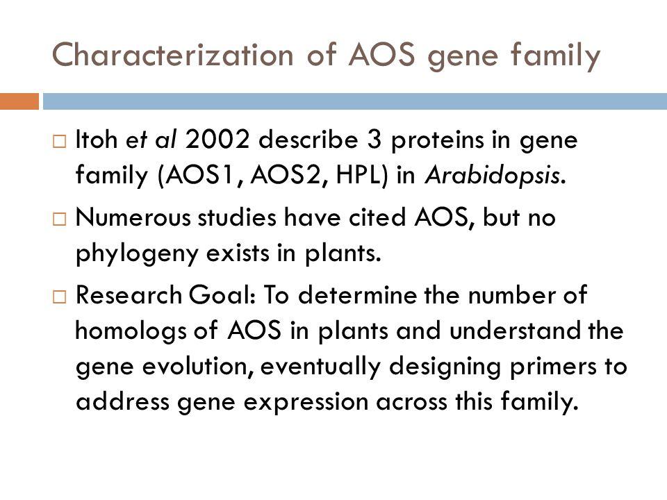Characterization of AOS gene family  Itoh et al 2002 describe 3 proteins in gene family (AOS1, AOS2, HPL) in Arabidopsis.
