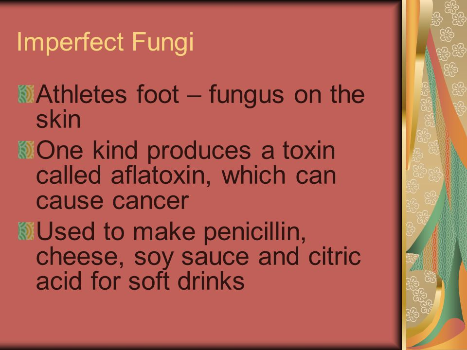 Imperfect Fungi Athletes foot – fungus on the skin One kind produces a toxin called aflatoxin, which can cause cancer Used to make penicillin, cheese,