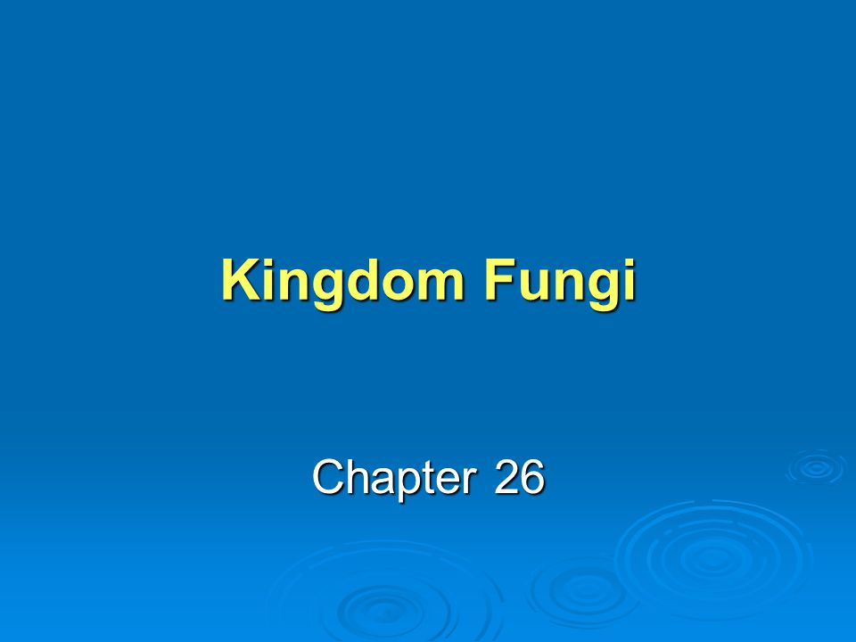 Learning Objective 1 What are the distinguishing characteristics of kingdom Fungi.
