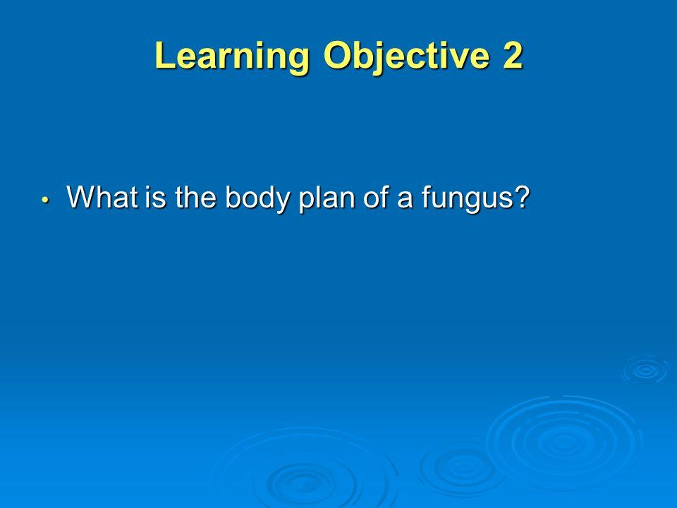 Fungal Plant Diseases