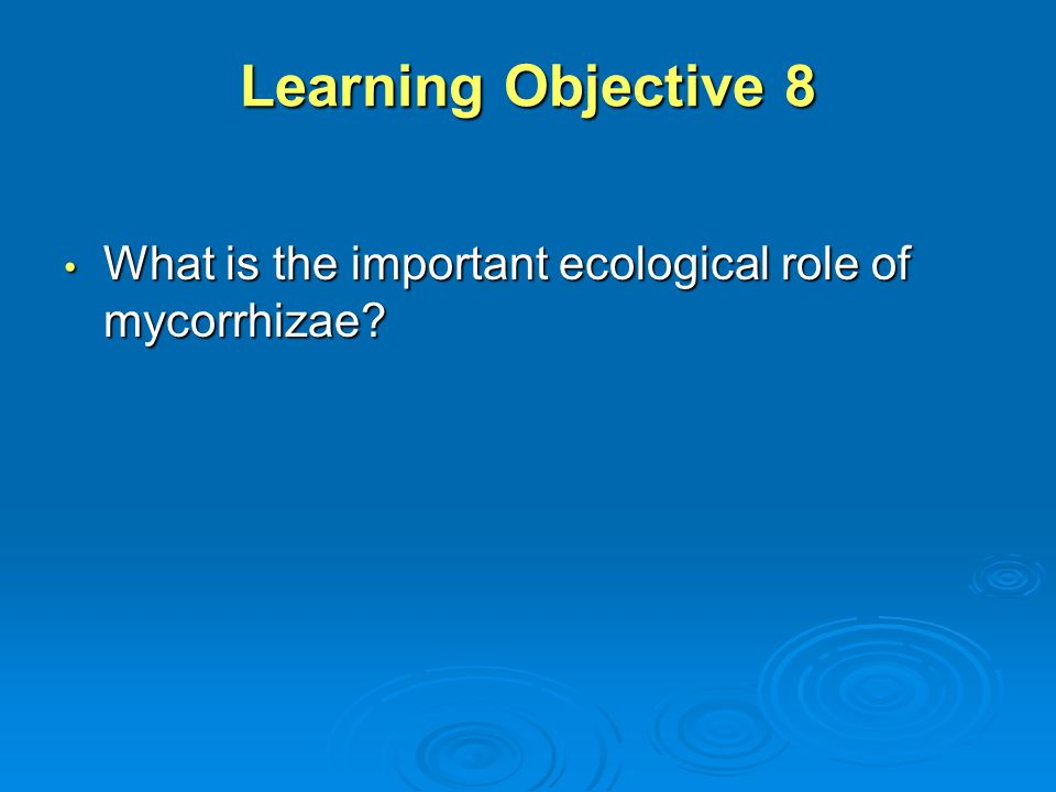 Learning Objective 8 What is the important ecological role of mycorrhizae? What is the important ecological role of mycorrhizae?