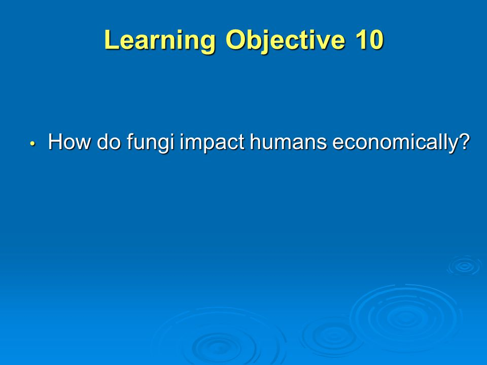 Learning Objective 10 How do fungi impact humans economically? How do fungi impact humans economically?