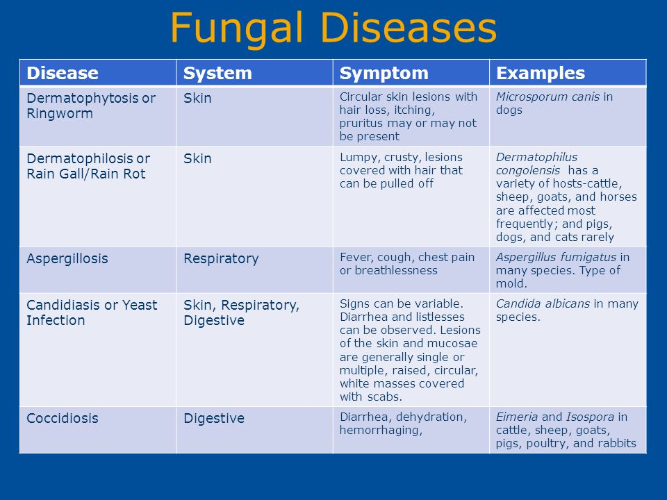 Fungal Diseases DiseaseSystemSymptomExamples Dermatophytosis or Ringworm Skin Circular skin lesions with hair loss, itching, pruritus may or may not b