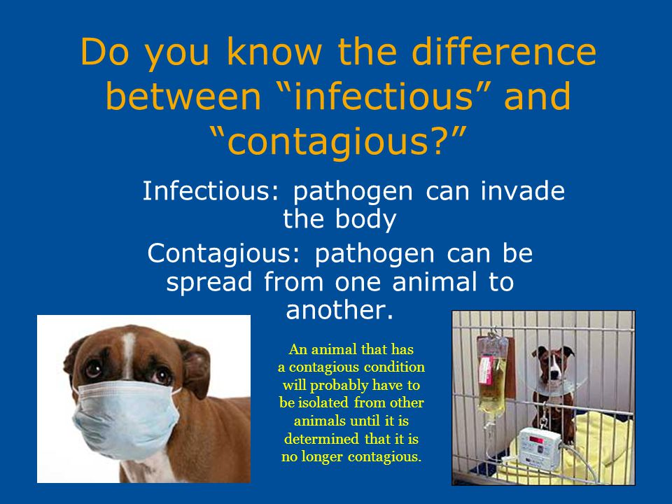 "Do you know the difference between ""infectious"" and ""contagious?"" Infectious: pathogen can invade the body Contagious: pathogen can be spread from one"