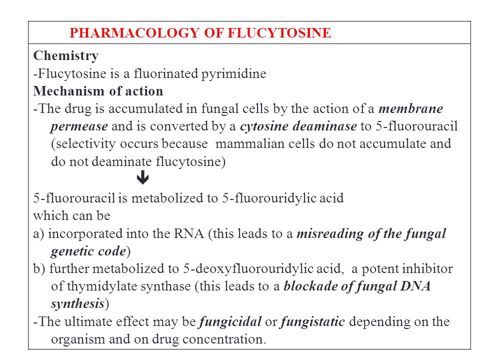 PHARMACOLOGY OF FLUCYTOSINE Chemistry -Flucytosine is a fluorinated pyrimidine Mechanism of action -The drug is accumulated in fungal cells by the action of a membrane permease and is converted by a cytosine deaminase to 5-fluorouracil (selectivity occurs because mammalian cells do not accumulate and do not deaminate flucytosine)  5-fluorouracil is metabolized to 5-fluorouridylic acid which can be a) incorporated into the RNA (this leads to a misreading of the fungal genetic code) b) further metabolized to 5-deoxyfluorouridylic acid, a potent inhibitor of thymidylate synthase (this leads to a blockade of fungal DNA synthesis) -The ultimate effect may be fungicidal or fungistatic depending on the organism and on drug concentration.