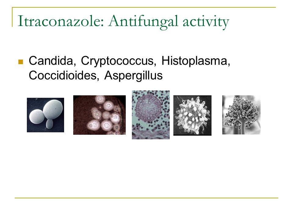 Itraconazole: Antifungal activity Candida, Cryptococcus, Histoplasma, Coccidioides, Aspergillus