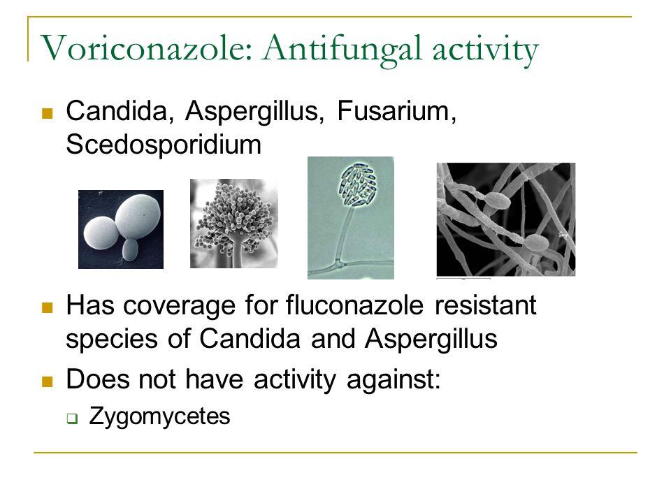 Voriconazole: Antifungal activity Candida, Aspergillus, Fusarium, Scedosporidium Has coverage for fluconazole resistant species of Candida and Aspergi