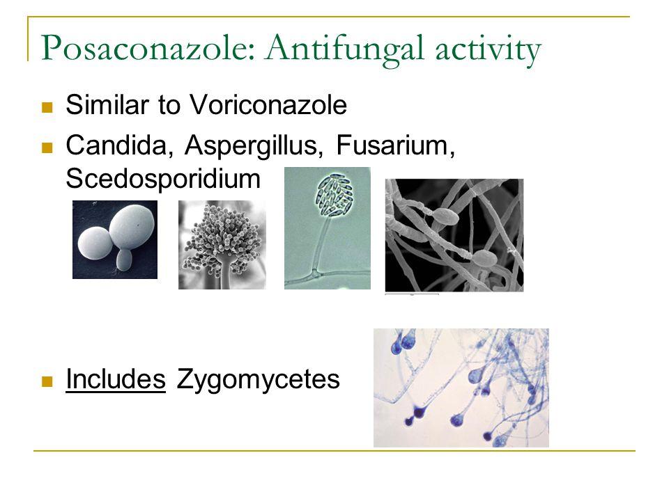 Posaconazole: Antifungal activity Similar to Voriconazole Candida, Aspergillus, Fusarium, Scedosporidium Includes Zygomycetes