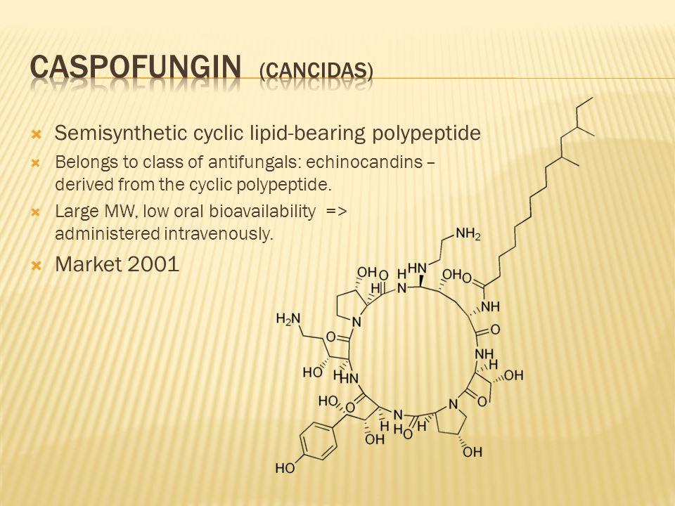  Semisynthetic cyclic lipid-bearing polypeptide  Belongs to class of antifungals: echinocandins – derived from the cyclic polypeptide.  Large MW, l