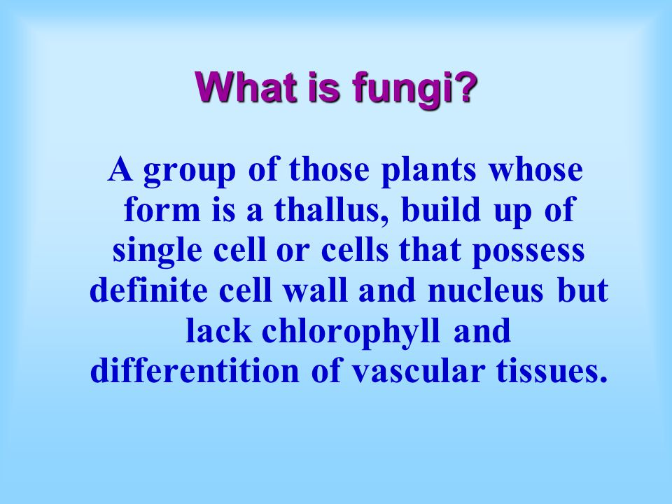 The Characteristics of Fungi Fungi are plants Hyphae = tubular units of construction Heterotrophic by absorption Reproduce by spores Ecologically impotant roles Body form -unicellular *multicellular, such as mycelial cords, rhizomorphs, and fruit bodies (mushrooms)