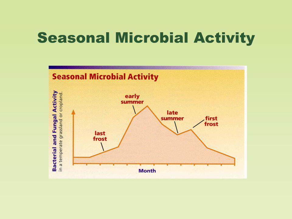 Seasonal Microbial Activity