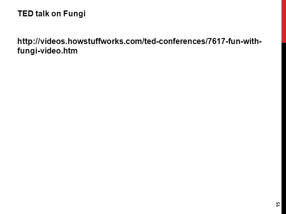 TED talk on Fungi http://videos.howstuffworks.com/ted-conferences/7617-fun-with- fungi-video.htm 15