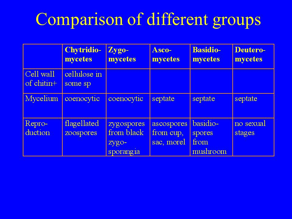 Comparison of different groups