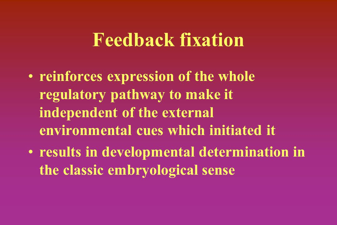 Feedback fixation reinforces expression of the whole regulatory pathway to make it independent of the external environmental cues which initiated it results in developmental determination in the classic embryological sense