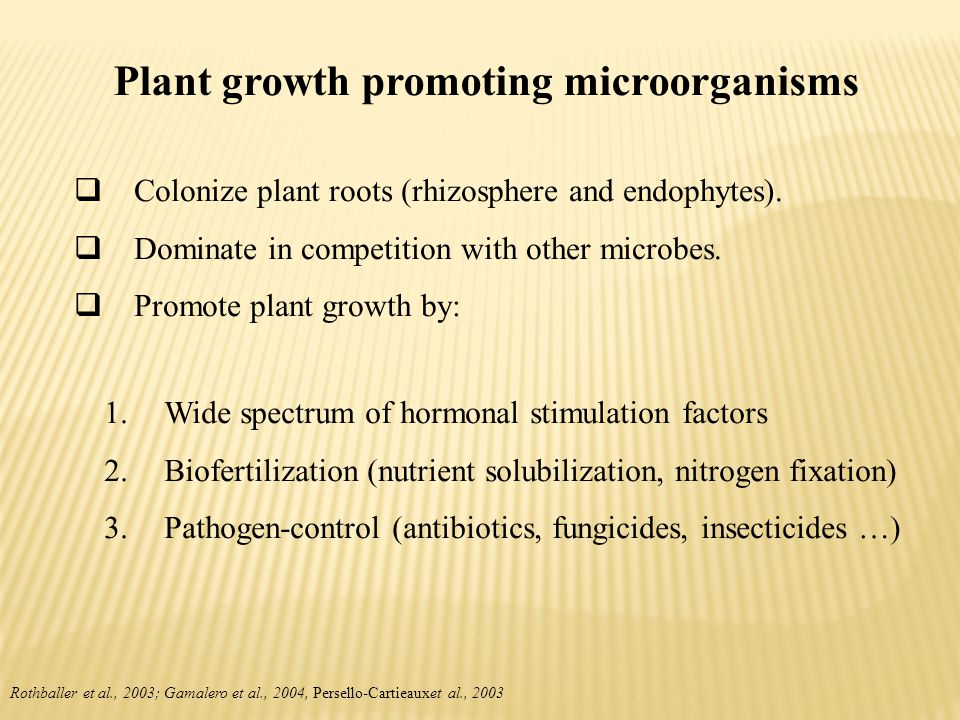 Plant growth promoting microorganisms  Colonize plant roots (rhizosphere and endophytes).  Dominate in competition with other microbes.  Promote pl
