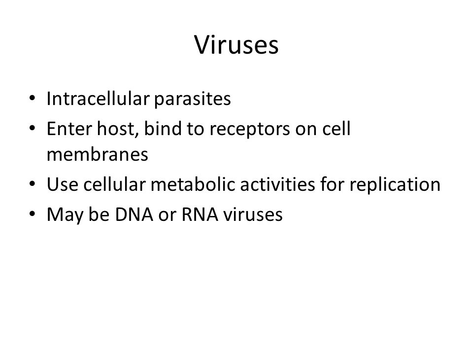 Viruses Intracellular parasites Enter host, bind to receptors on cell membranes Use cellular metabolic activities for replication May be DNA or RNA vi