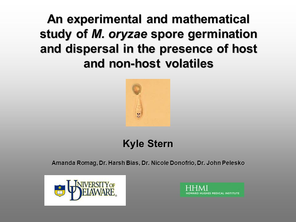 Kyle Stern Amanda Romag, Dr. Harsh Bias, Dr. Nicole Donofrio, Dr. John Pelesko An experimental and mathematical study of M. oryzae spore germination a