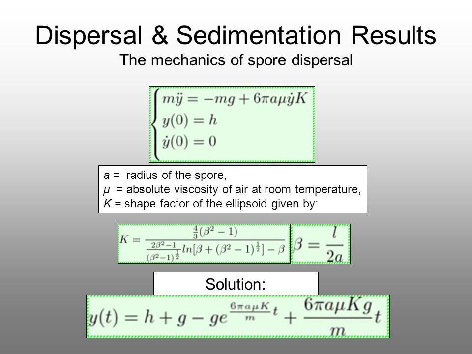 Dispersal & Sedimentation Results The mechanics of spore dispersal Solution: a = radius of the spore, μ = absolute viscosity of air at room temperatur