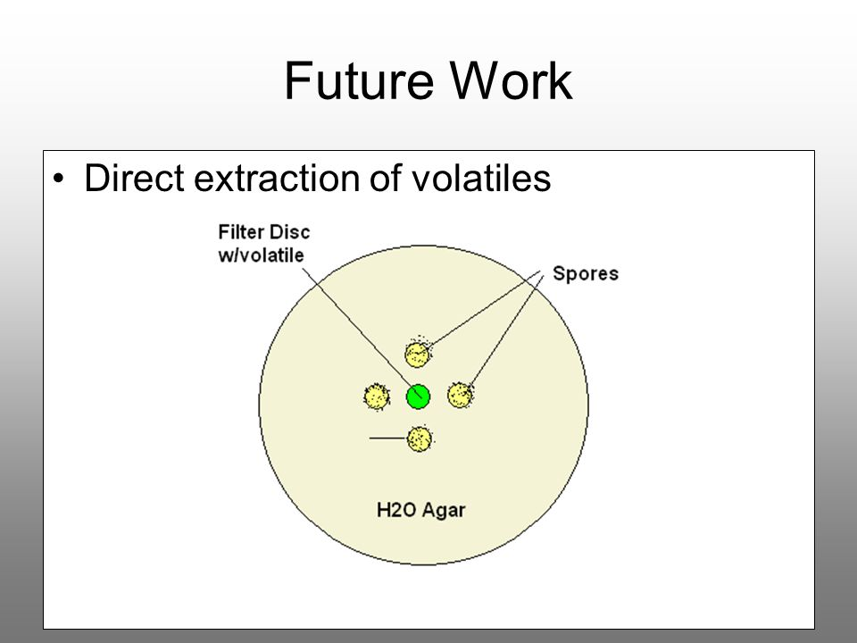 Future Work Direct extraction of volatiles