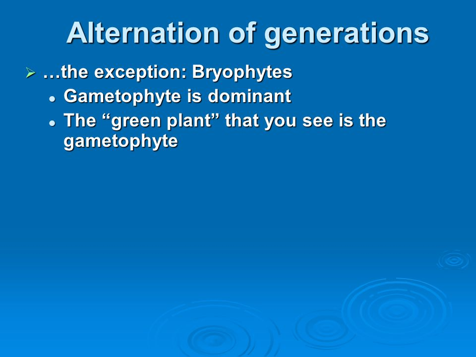 """Alternation of generations  …the exception: Bryophytes Gametophyte is dominant Gametophyte is dominant The """"green plant"""" that you see is the gametoph"""