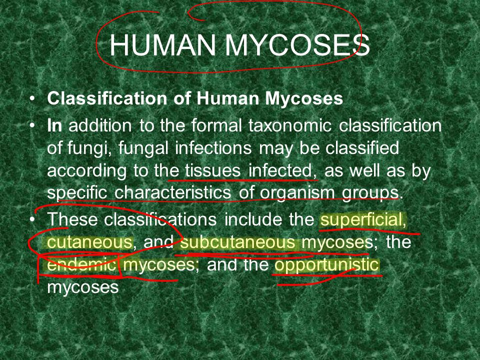 HUMAN MYCOSES Classification of Human Mycoses In addition to the formal taxonomic classification of fungi, fungal infections may be classified accordi
