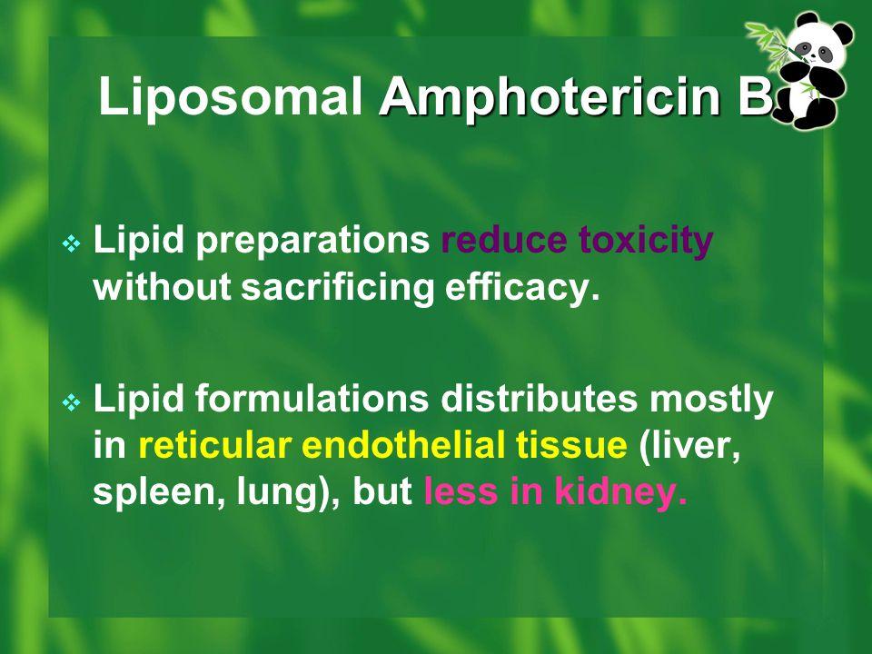 Amphotericin B Liposomal Amphotericin B  Lipid preparations reduce toxicity without sacrificing efficacy.  Lipid formulations distributes mostly in