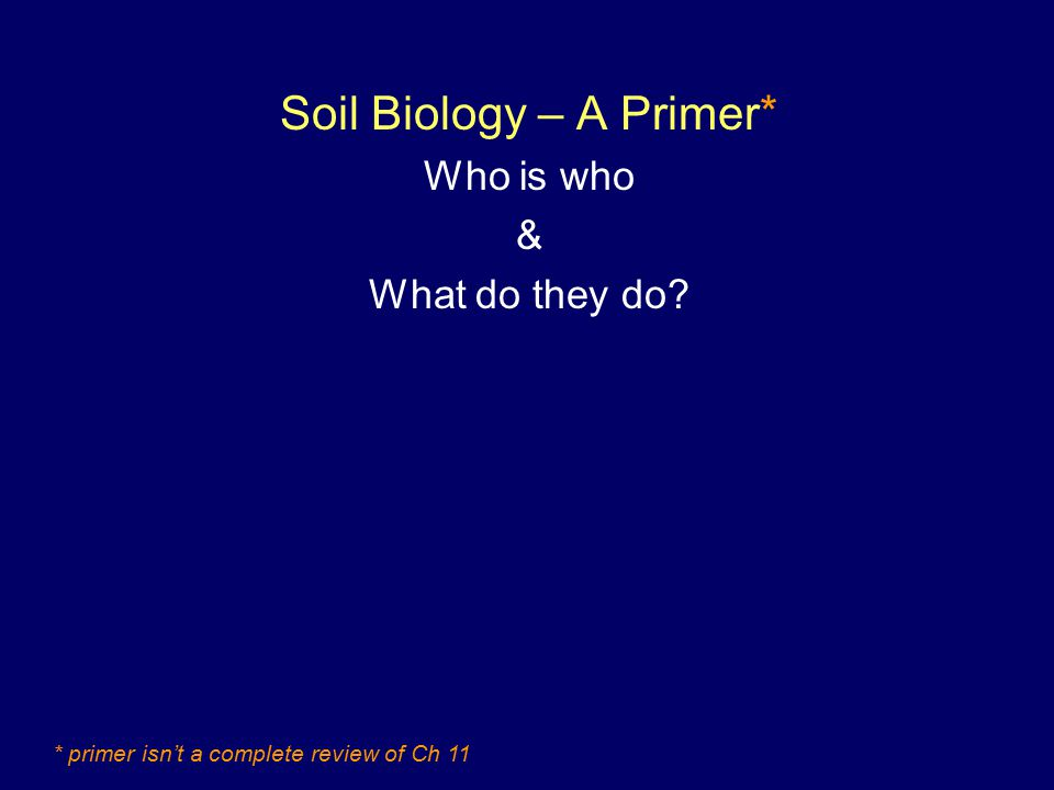 Soil Biology – A Primer* Who is who & What do they do * primer isn't a complete review of Ch 11