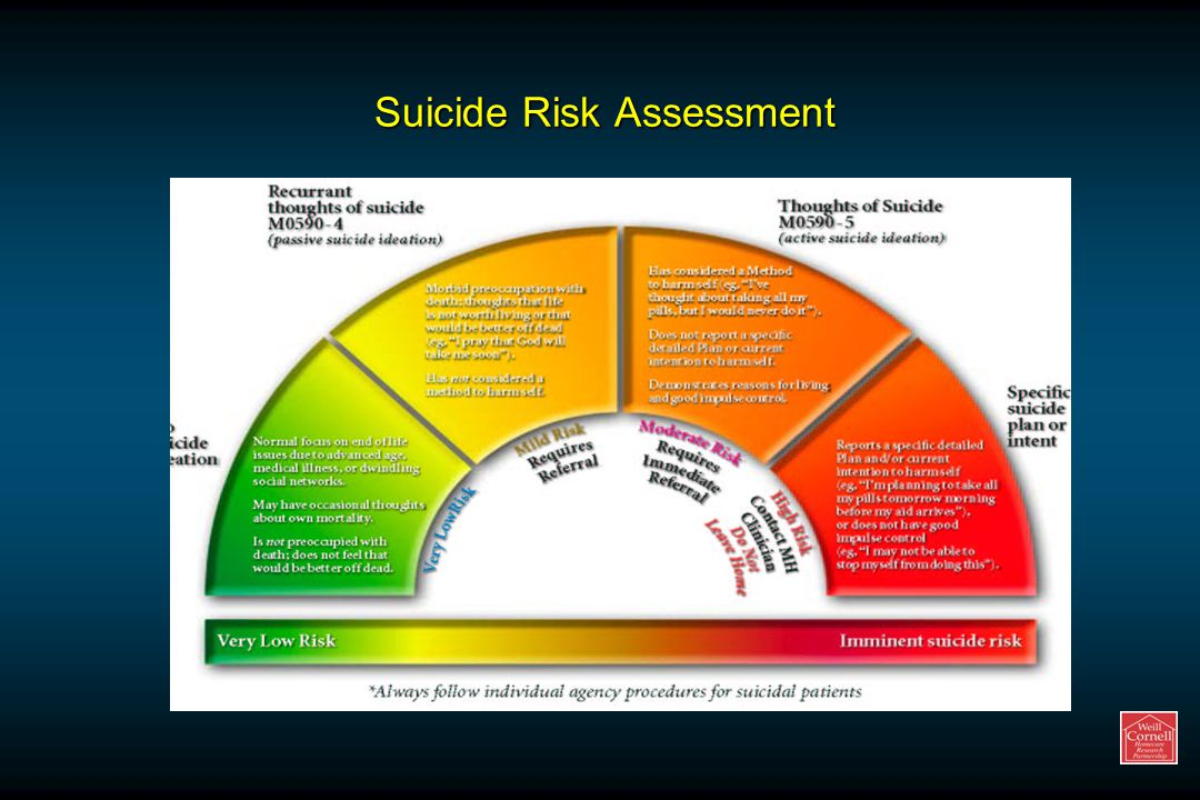Suicide Risk Assessment
