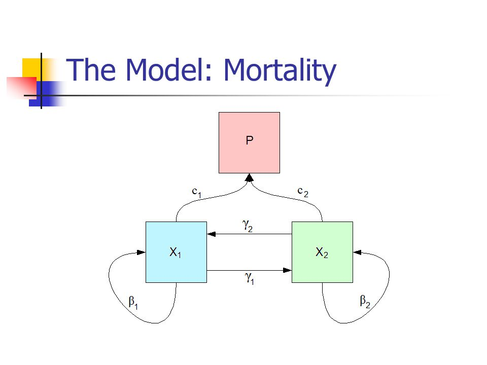 The Model: Mortality