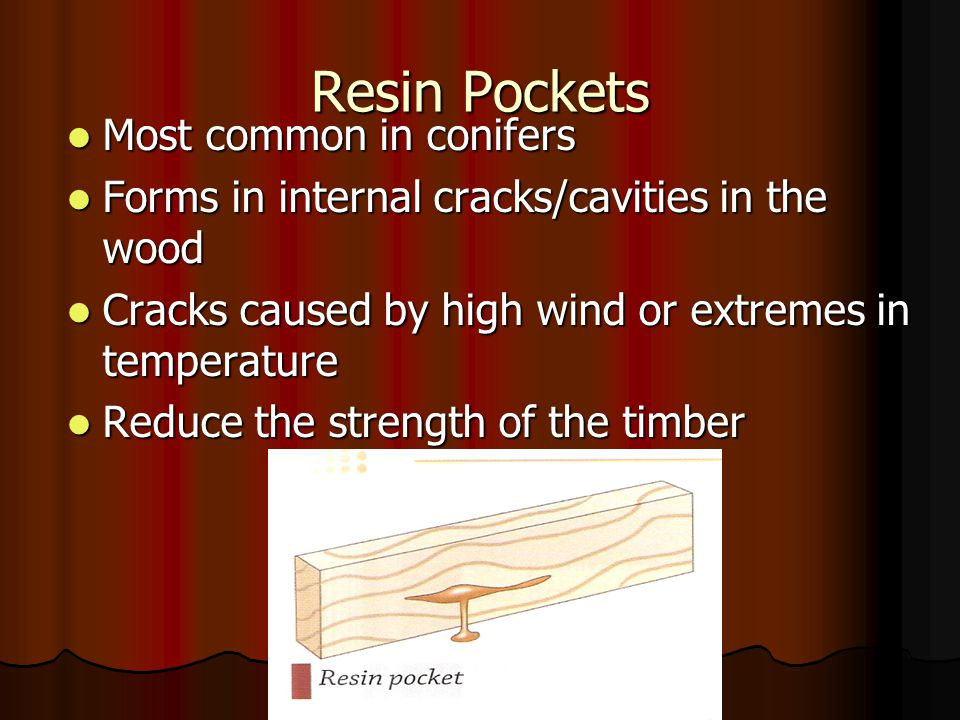 Resin Pockets Most common in conifers Most common in conifers Forms in internal cracks/cavities in the wood Forms in internal cracks/cavities in the w