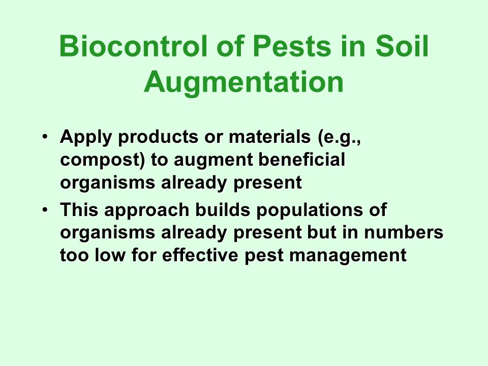 Biocontrol of Pests in Soil Augmentation Apply products or materials (e.g., compost) to augment beneficial organisms already presentApply products or materials (e.g., compost) to augment beneficial organisms already present This approach builds populations of organisms already present but in numbers too low for effective pest managementThis approach builds populations of organisms already present but in numbers too low for effective pest management