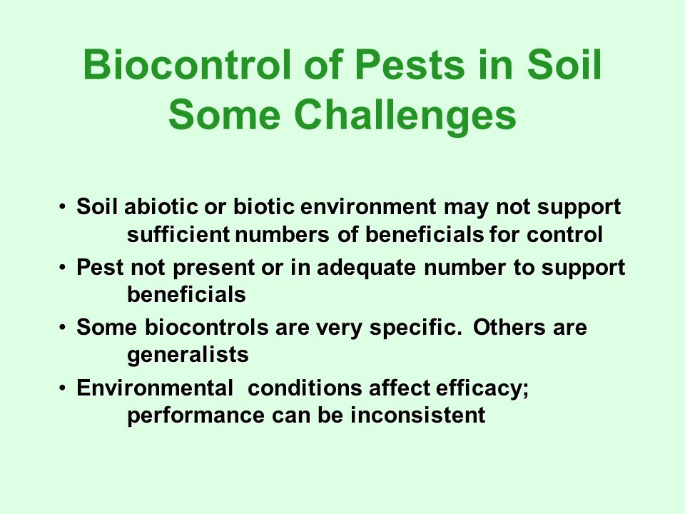 Biocontrol of Pests in Soil Some Challenges Soil abiotic or biotic environment may not support sufficient numbers of beneficials for controlSoil abiotic or biotic environment may not support sufficient numbers of beneficials for control Pest not present or in adequate number to support beneficialsPest not present or in adequate number to support beneficials Some biocontrols are very specific.