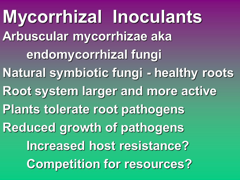 Mycorrhizal Inoculants Arbuscular mycorrhizae aka endomycorrhizal fungi Natural symbiotic fungi - healthy roots Root system larger and more active Plants tolerate root pathogens Reduced growth of pathogens Increased host resistance.