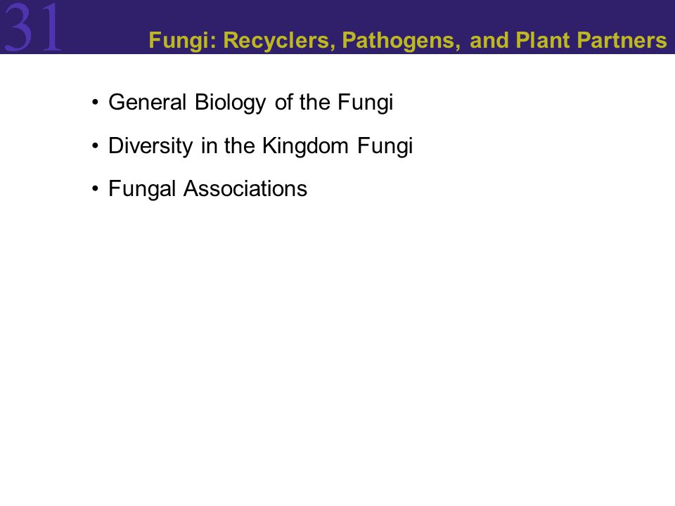 31 General Biology of the Fungi The fungi live by absorptive nutrition, secreting digestive enzymes that break down large food molecules and absorbing the breakdown products.