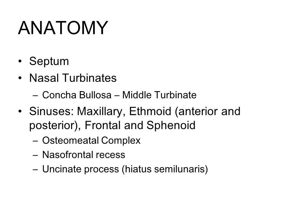 ANATOMY Septum Nasal Turbinates –Concha Bullosa – Middle Turbinate Sinuses: Maxillary, Ethmoid (anterior and posterior), Frontal and Sphenoid –Osteomeatal Complex –Nasofrontal recess –Uncinate process (hiatus semilunaris)