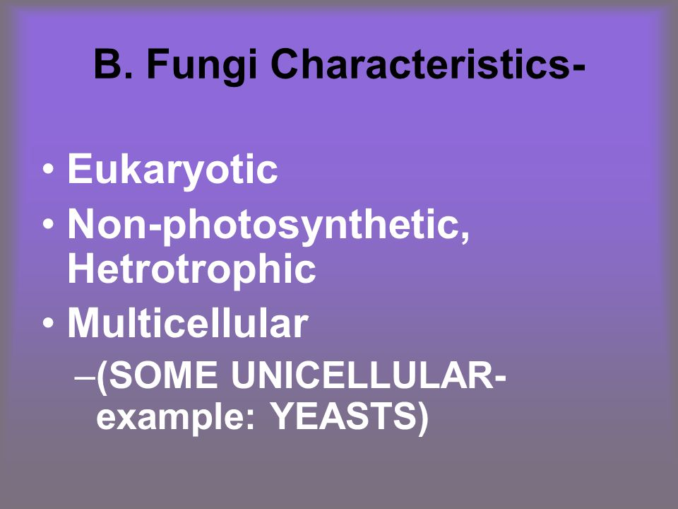 B. Fungi Characteristics- Eukaryotic Non-photosynthetic, Hetrotrophic Multicellular –(SOME UNICELLULAR- example: YEASTS)