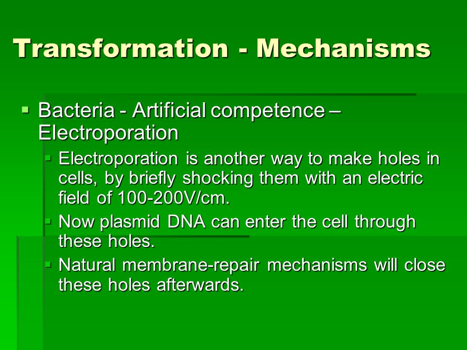Transformation - Mechanisms  Bacteria - Artificial competence – Electroporation  Electroporation is another way to make holes in cells, by briefly shocking them with an electric field of 100-200V/cm.