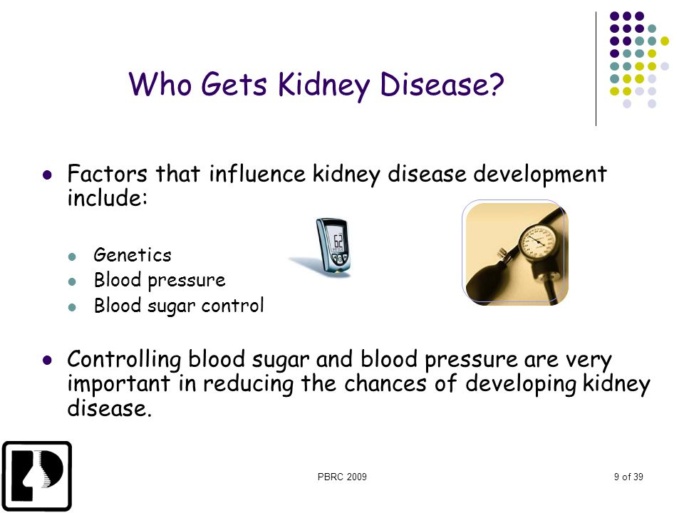 PBRC 20099 of 39 Who Gets Kidney Disease? Factors that influence kidney disease development include: Genetics Blood pressure Blood sugar control Contr