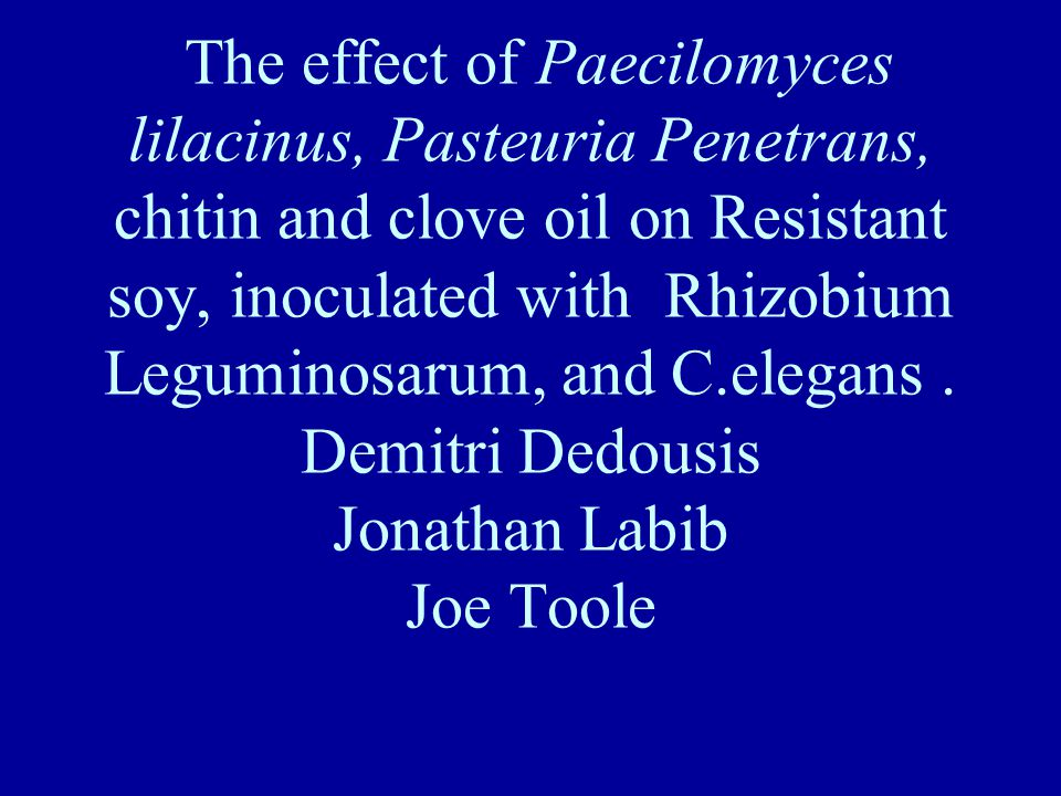 The effect of Paecilomyces lilacinus, Pasteuria Penetrans, chitin and clove oil on Resistant soy, inoculated with Rhizobium Leguminosarum, and C.elegans.