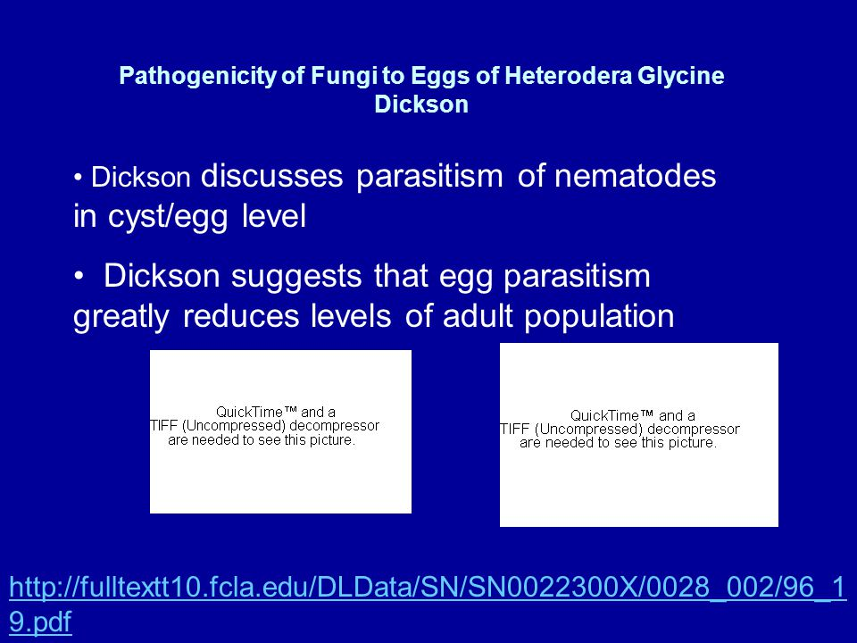Pathogenicity of Fungi to Eggs of Heterodera Glycine Dickson Dickson discusses parasitism of nematodes in cyst/egg level Dickson suggests that egg parasitism greatly reduces levels of adult population http://fulltextt10.fcla.edu/DLData/SN/SN0022300X/0028_002/96_1 9.pdf