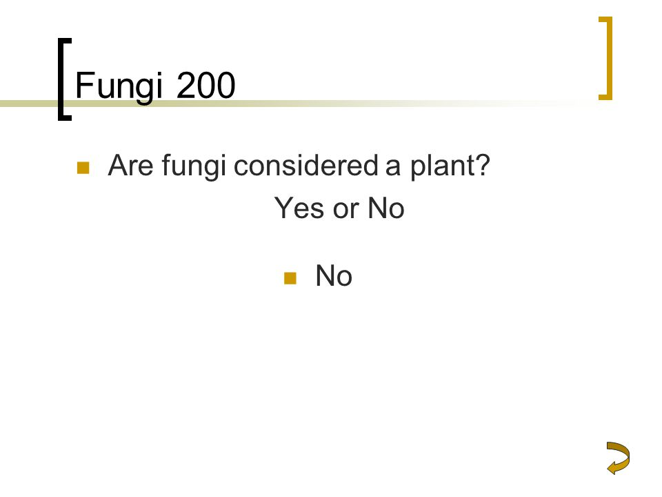 Fungi 200 Are fungi considered a plant? Yes or No No