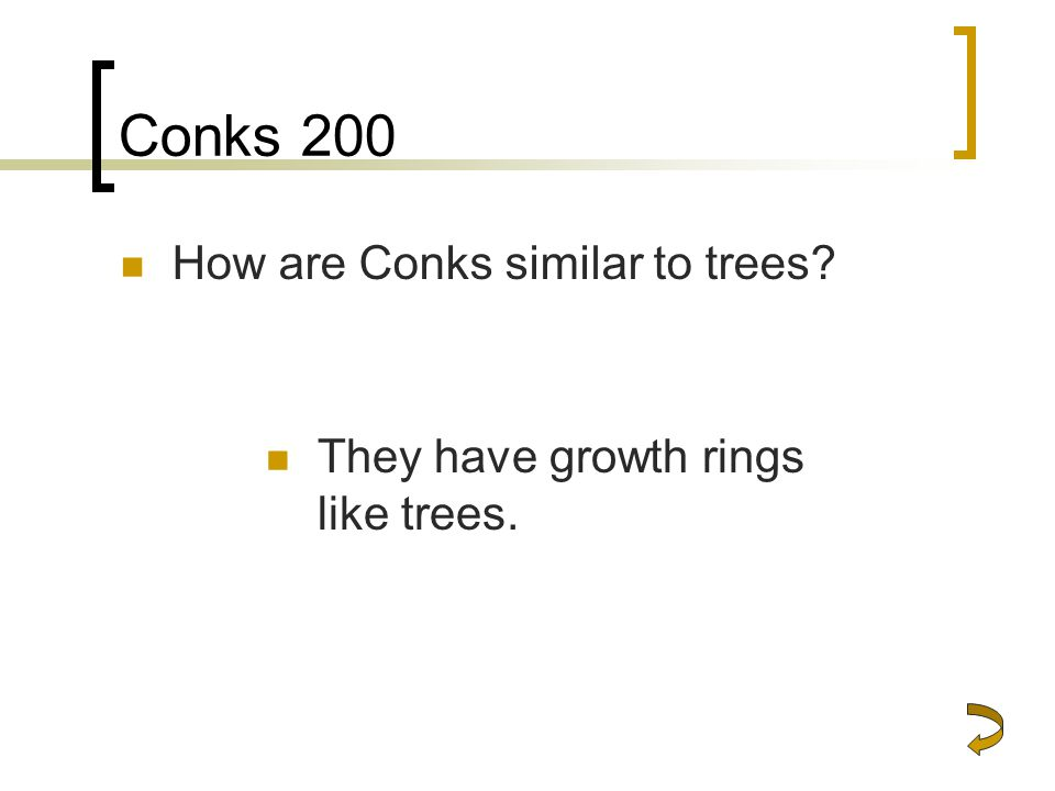 Conks 200 How are Conks similar to trees? They have growth rings like trees.