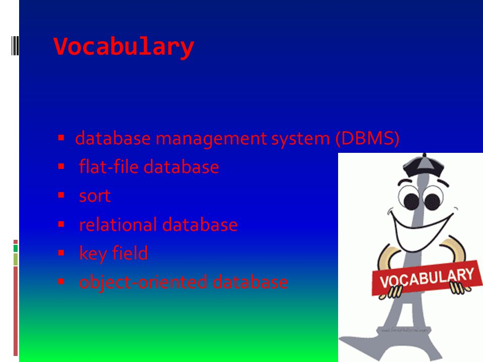 Vocabulary  database  Table  record  field  data type  garbage in, garbage out (GIGO)